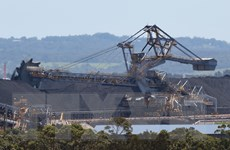 Tòa án Australia lần đầu bác dự án khai thác than do ô nhiễm toàn cầu