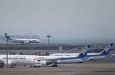 Hãng All Nippon Airways hoãn một chuyến bay do phi công uống rượu