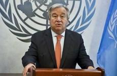 Tổng Thư ký LHQ đề xuất nâng cấp phái bộ gìn giữ hòa bình ở Nam Sudan