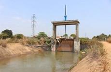 Các hồ đã xả 4,42 tỷ m3 nước để gieo cấy lúa vụ Đông Xuân