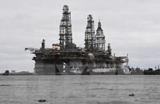 Giá dầu thế giới đi lên nhờ nỗ lực cắt giảm sản lượng của OECD