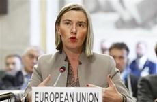 EU tái khẳng định không công nhận kết quả trưng cầu của Crimea