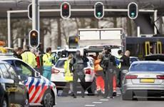 Chính phủ Hà Lan họp xử lý khủng hoảng sau vụ xả súng
