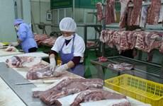 Việt Nam chưa nhận được khuyến cáo nào của FAO về dịch tả lợn châu Phi
