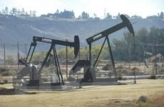Sức ảnh hưởng ngày càng lớn của Mỹ trong thế giới dầu mỏ