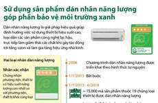 Sử dụng sản phẩm dán nhãn năng lượng để bảo vệ môi trường xanh