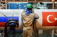 """Moskva-Ankara nhất trí dự án đường ống khí đốt """"Dòng chảy Thổ Nhĩ Kỳ"""""""