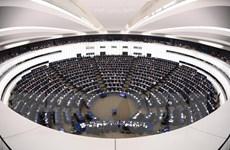 Các nghị sỹ ủng hộ EU sẽ lập chính đảng tham gia bầu nghị viện châu Âu