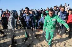 Hàng chục nghìn người Palestine biểu tình dọc biên giới Gaza-Israel