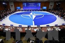 Rạn nứt bên trong NATO xuất hiện trước khi ông Trump lên nắm quyền?