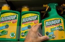 Loại bỏ thuốc bảo vệ thực vật chứa hoạt chất Glyphosate