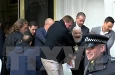Chính phủ Anh không vận động Ecuador hủy quyền tị nạn của ông Assange