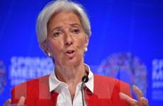 Tổng giám đốc IMF kêu gọi Argentina kiên trì cải cách kinh tế