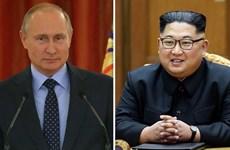 KCNA: Tổng thống Nga gửi lời chúc mừng tới nhà lãnh đạo Triều Tiên