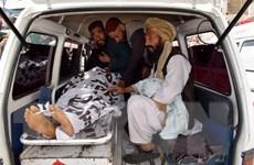 Nhà nước Hồi giáo tuyên bố thực hiện vụ đánh bom tại Pakistan