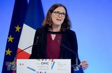 """EU nêu """"giới hạn đỏ"""" trong các cuộc đàm phán thương mại với Mỹ"""