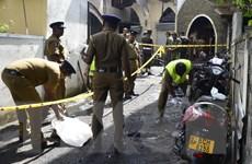 Interpol sẵn sàng giúp điều tra các vụ nổ tại Sri Lanka