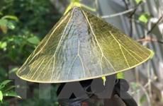 Nâng tầm và khẳng định thương hiệu Festival nghề truyền thống Huế