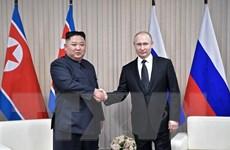 Trong ảnh: Tổng thống Nga Vladimir Putin (phải) và nhà lãnh đạo Triều