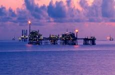 Hỗ trợ tối đa cho doanh nghiệp Nga đầu tư tại tỉnh Bà Rịa-Vũng Tàu