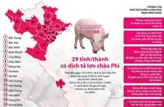[Infographics] 29 tỉnh, thành phố có dịch tả lợn châu Phi