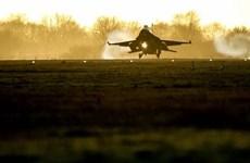 Đức và Hà Lan tạm ngừng sứ mệnh huấn luyện quân sự ở Iraq