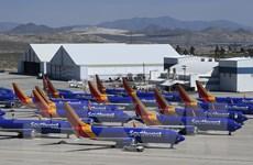 Các hãng hàng không tìm giải pháp thay thế đồ nhựa dùng một lần