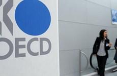 OECD hạ dự báo tăng trưởng toàn cầu từ mức 3,3% xuống 3,2%