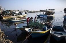 Israel mở rộng phạm vi cho phép đánh cá ở ngoài khơi Dải Gaza