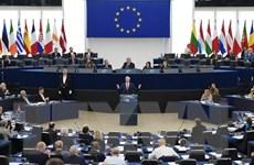 Bầu cử nghị viện châu Âu với cuộc chiến chống nạn tin giả