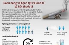 [Infographics] Gánh nặng về bệnh tật và kinh tế từ hút thuốc