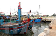 Hà Tĩnh: Hàng chục tỷ đồng nạo vét cảng, tàu cá vẫn mắc cạn