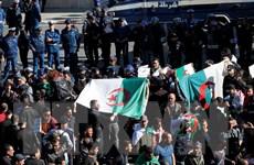 Hội đồng Hiến pháp Algeria hủy kế hoạch tổ chức bầu cử tổng thống