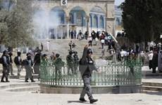 Đụng độ giữa người Palestine và cảnh sát Israel ở thánh địa Jerusalem