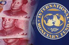 IMF hạ dự báo tăng trưởng kinh tế Trung Quốc do cuộc chiến thương mại
