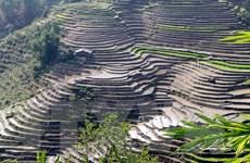 Hình ảnh Lai Châu lại nhộn nhịp bước vào mùa nước đổ