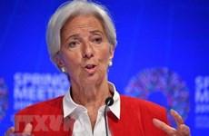 IMF hối thúc G20 ưu tiên giải quyết căng thẳng thương mại