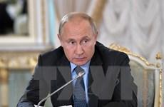 Tổng thống Putin: Cuộc chiến chống tham nhũng là không khoan nhượng