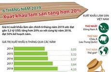 [Infographics] 6 tháng qua, xuất khẩu lâm sản tăng hơn 20%