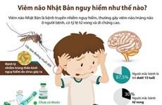 [Infographics] Viêm não Nhật Bản nguy hiểm như thế nào?