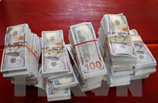 An Giang: Bắt giữ thuyền máy vận chuyển 470.000 USD qua biên giới