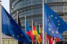 Bầu cử Chủ tịch Nghị viện châu Âu sẽ diễn ra vào ngày 3/7