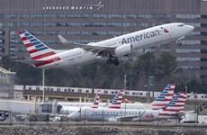 American Airlines quan ngại về kết quả kinh doanh do 737 MAX bị cấm