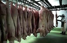 Hy Lạp cấm nhập khẩu thịt lợn từ Bulgaria do dịch tả lợn châu Phi