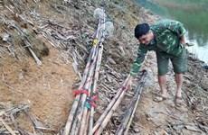Yên Bái: Nhức nhối nạn đánh cá bằng xung điện trên hồ Thác Bà