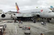 Các hãng hàng không Hàn Quốc giảm chuyến bay đến Nhật Bản