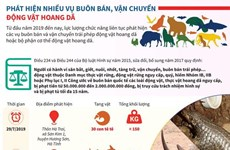 [Infographics] Những vụ buôn bán động vật hoang dã lớn bị triệt phá
