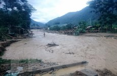 Hòa Bình: Mưa lớn gây lũ quét và sạt lở đất ở huyện vùng cao Đà Bắc