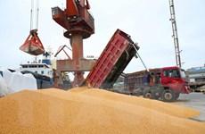 Trung Quốc khẳng định tôn trọng cam kết mua nông sản Mỹ