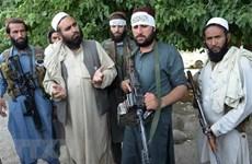 Taliban đe dọa phá hoại cuộc bầu cử Tổng thống Afghanistan